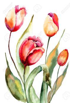 21203001-Tulips-flowers-Watercolor-painting-Stock-Photo.jpg (883×1300)