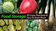 Food Storage - 20 Crops That Keep And How to Store Them