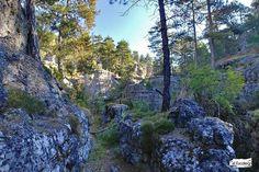 Ruta de Las Catedrales de Uña: Recorrido, fotos y track. Plants, Travel, Hiking Trails, Cathedrals, Beautiful Places, Viajes, Plant, Traveling, Tourism
