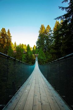 Capilano Suspension Bridge, Vancouver, [beautiful] British Columbia