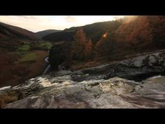 Rachel Sermanni Everything Changes - YouTube
