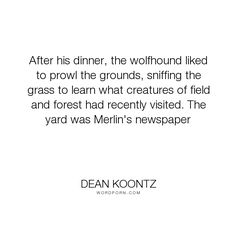 """Dean Koontz - """"After his dinner, the wolfhound liked to prowl the grounds, sniffing the grass to..."""". dogs"""