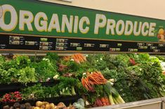 Health and Care: Organic food as a healthy habit