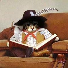 Reading maverick!