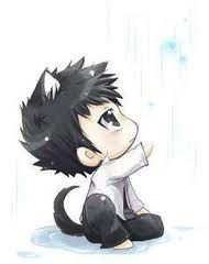 Chibi Gray   Fairy Tail