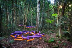 Terms of Trade (exchange) 2014, suspended and rotating at call.  My rosettes in Sculpture at Scenic World, Katoomba, NSW Australia. beaut photo © A Shot Above Photography & Imaging - Simon Alexander Cook #mpathe