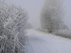 Winter in Zeeland.