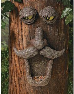 17 best ideas about Tree Faces on Pinterest | Trees, Tree roots ...
