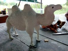 Camal Sculpture