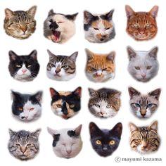 再販 かわいい ねこ neko  シール Crazy Cat Lady, Crazy Cats, Animals And Pets, Cute Animals, Super Cute Cats, Fancy Cats, Cat Cards, Little Doll, Vintage Cat