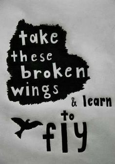 Take this broken wings and learn to fly | Anonymous ART of Revolution
