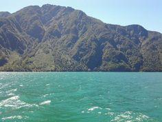 Lago Tagua Tagua.