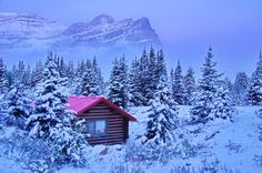 Have you dreamt about enjoying a ski trip in the Canadian Rockies? Let us take you on a active boomer journey to this beautiful winter-weather paradise. Banff National Park, National Parks, Canadian House, Fairmont Chateau Lake Louise, Emerald Lake, Canadian Rockies, Travel Activities, Cabins In The Woods, Amazing Destinations