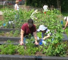 Children learn about growing their own produce