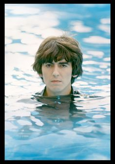 ♡♥George relaxes in a pool - click on pic to see a larger pic♥♡