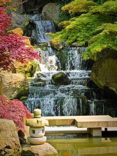 Kyoto Garden in London's Holland Park #nature #park #London