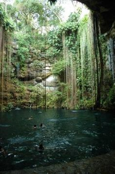 Cenote in Yucatan, Mexico. I hope to experience this again in my lifetime.