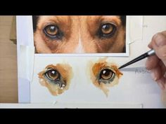 How to Paint a Realistic Retriever Dog in Watercolor - YouTube
