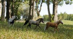 realistic schleich horse pictures - Google Search
