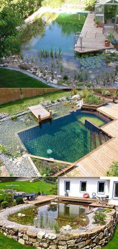 Wonderful Family Natural Swimming Pools