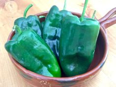 Poblano chiles - #mexicanfood #mexicancuisine #peppers