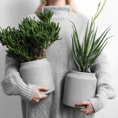 PLANTS//