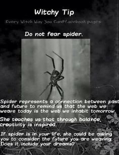 Witchy tip spiders. That will not be easy for me to not fear, but a thing to think about next time I see one.
