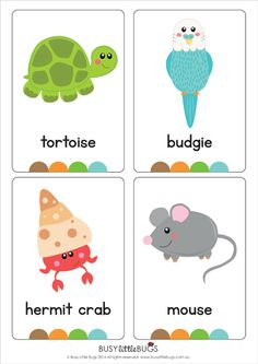 "Our set of printable ""My Pets Flash Cards"" are a great learning tool for early literacy and would be a great addition to a health unit. All brightly coloured and of high quality. Preschool Learning, Preschool Activities, Ingles Kids, Flashcards For Kids, English Activities, School Decorations, Little Learners, Early Literacy, Kids Education"