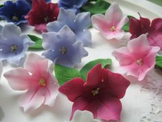 Strawberry Hill: квіткові орнаменти: Інструкції