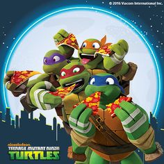 Take a look at the Teenage Mutant Ninja Turtles Collection event on zulily today!
