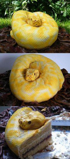 Just a snake? Creepy cake.