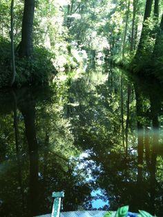 Spreewald:Eindrücke einer typischen Fahrt im traditionellen Spreewald-Holzkahn