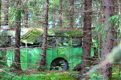 Kiia Innanmaa: AN OLD BUS