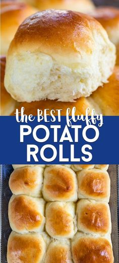 The BEST Fluffy Potato Rolls Recipe – Crazy for Crust These are the BEST ever light and fluffy dinner rolls – Potato Rolls! Use instant potatoes to make a soft homemade dinner roll from scratch. These are easy, fast and SO good. Fluffy Dinner Rolls, Homemade Dinner Rolls, Easy Homemade Bread, Potato Rolls Recipe, Fast Rolls Recipe, Fluffy Yeast Rolls Recipe, Fluffy Bread Recipe, Roll Recipe, Quick Rolls