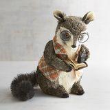 Professor Raccoon Natural Decor