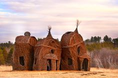 Featured — Patrick Dougherty
