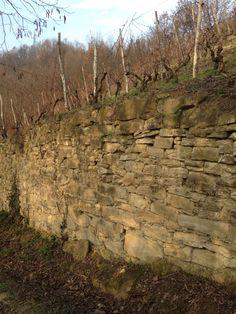 Il muro della vigna
