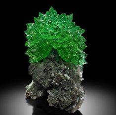 Splendid Crystal of Dark Green Apophyllite with Stilbite and Chalcedony!!  www.superbmineralsindia.us  #splendid #crystals #dark #green #Apophyllite #Stilbite #Chalcedony #zeolite #gemstones #minerals #Rocks #Geology #MotherEarth #Earth #Nasik #nashik #pune #mumbai #Delhi #Tucson #Arizona #california #LA #NYC #Munich #nature #natural #Bandra