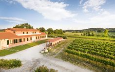 Agriturismo Cascina Roveri - Monzambano: information, traveller reviews and rating, photos, map, great offers and best deals in Agriturismo Cascina Roveri - Monzambano and Lake Garda.