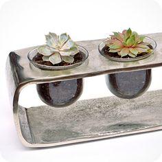SUCCULENT SILVER terrarium - zen garden sand glass terrarium, tabletop accent, centerpiece, birthday, anniversary, housewarming, office gift