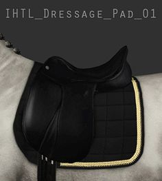 5 dressage pads + 1 show jumping pad - by Elin Frederiksdotter on Equus-Sims