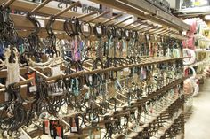 colorful pictures of western saddles | ... practical & fashion needs. What do you think about South Texas Tack