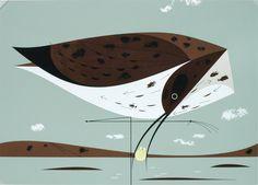 Eskimo Curlew by Charley Harper