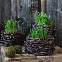 Diy Christmas Presents, Christmas Diy, Grass Decor, Greenery Decor, Spring Aesthetic, Spring Projects, Easter Parade, Paper Flowers Diy, Handmade Crafts