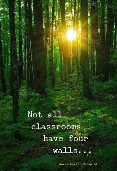 68 Ideas love nature quotes mother earth for 2019 Citation Nature, Great Quotes, Inspirational Quotes, Super Quotes, Motivational Quotes, Fourth Wall, Travel Quotes, Wise Words, Ayurveda