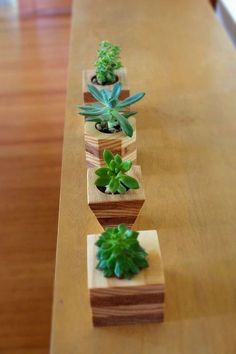 Awesome Small Wooden Planter Ideas To Refresh Your Space Wooden Planters, Planter Boxes, Planter Ideas, House Plants Decor, Plant Decor, Beautiful Home Gardens, Plant Box, Small Wood Projects, Garden In The Woods