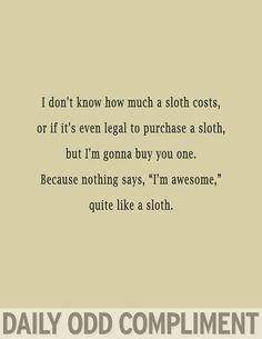 """Awesome Sloth"""