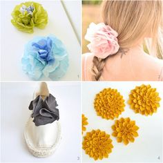 A few different types of flowers