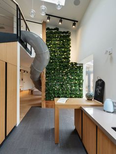 Unique Apartment With a Slide and Decorative Plant Wall