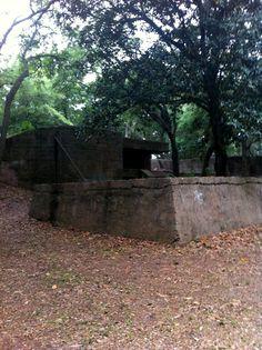 Ruins of the Spanish-American War era Fort Fremont on St. Helena Island near Beaufort, South Carolina.